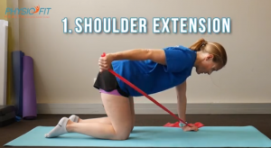 Four-point Kneeling Exercises: Shoulder Extension. This is how it should be done.