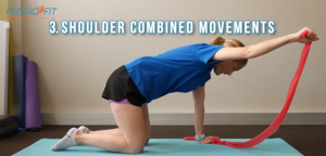 Four-point Kneeling Exercises: Shoulder Combined Movements. This is how it should be done.